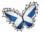 Ripped Torn Metal Butterfly Design With Scotland Scottish Saltire Flag Motif External Vinyl Car Sticker 125x90mm